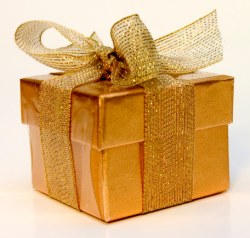 The Pretty Little Gift Box | Waiting for Baby Bird