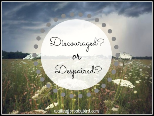 Discouraged Despaired