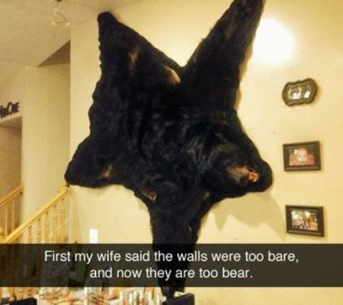 walls were bear