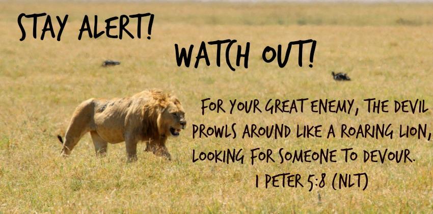 lion-prowling.jpg (850×421)