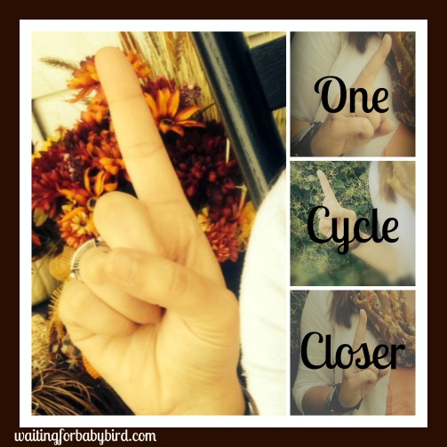 once cycle closer new