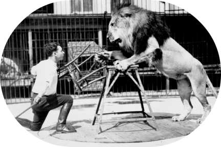 lion tamer and chair oval