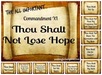 The Eleven Commandments Collage