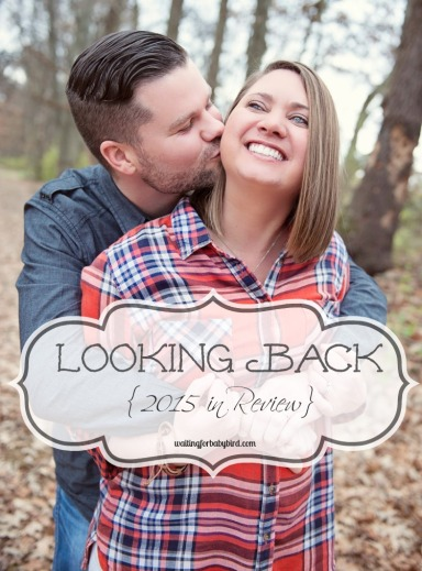 Looking Back {2015 in Review}