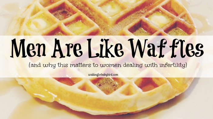 Men Are Like Waffles (why this matters to women)