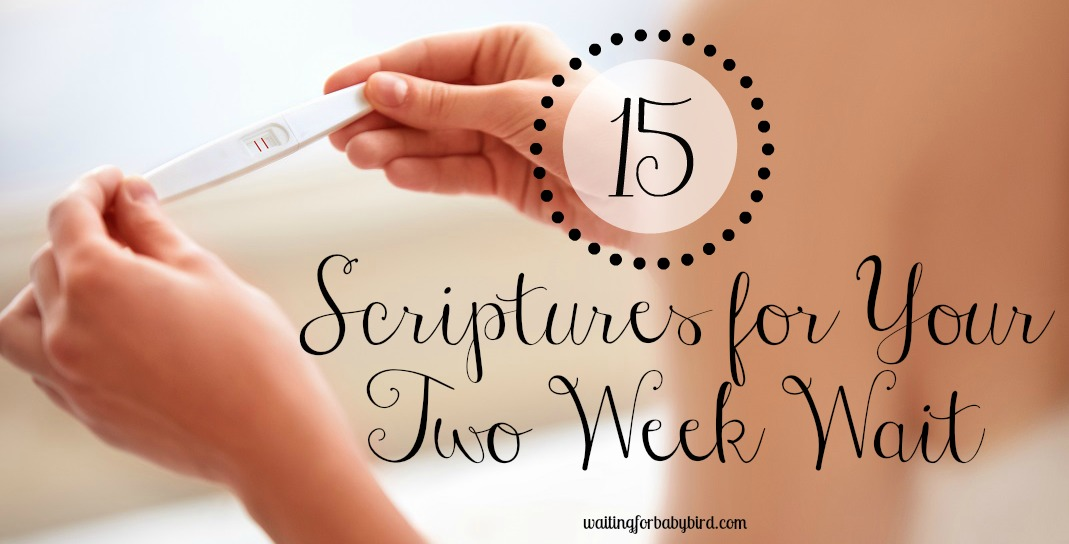 15 Scriptures for Your Two Week Wait | Waiting for Baby Bird